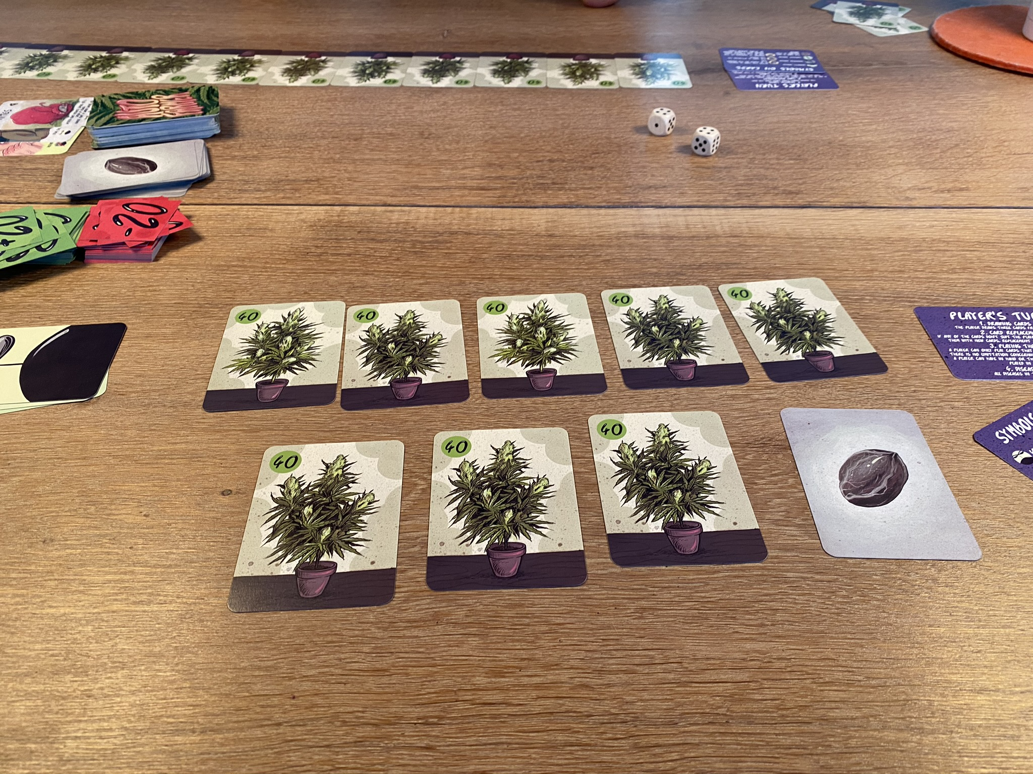 2 player setup - lucky bunch of plants