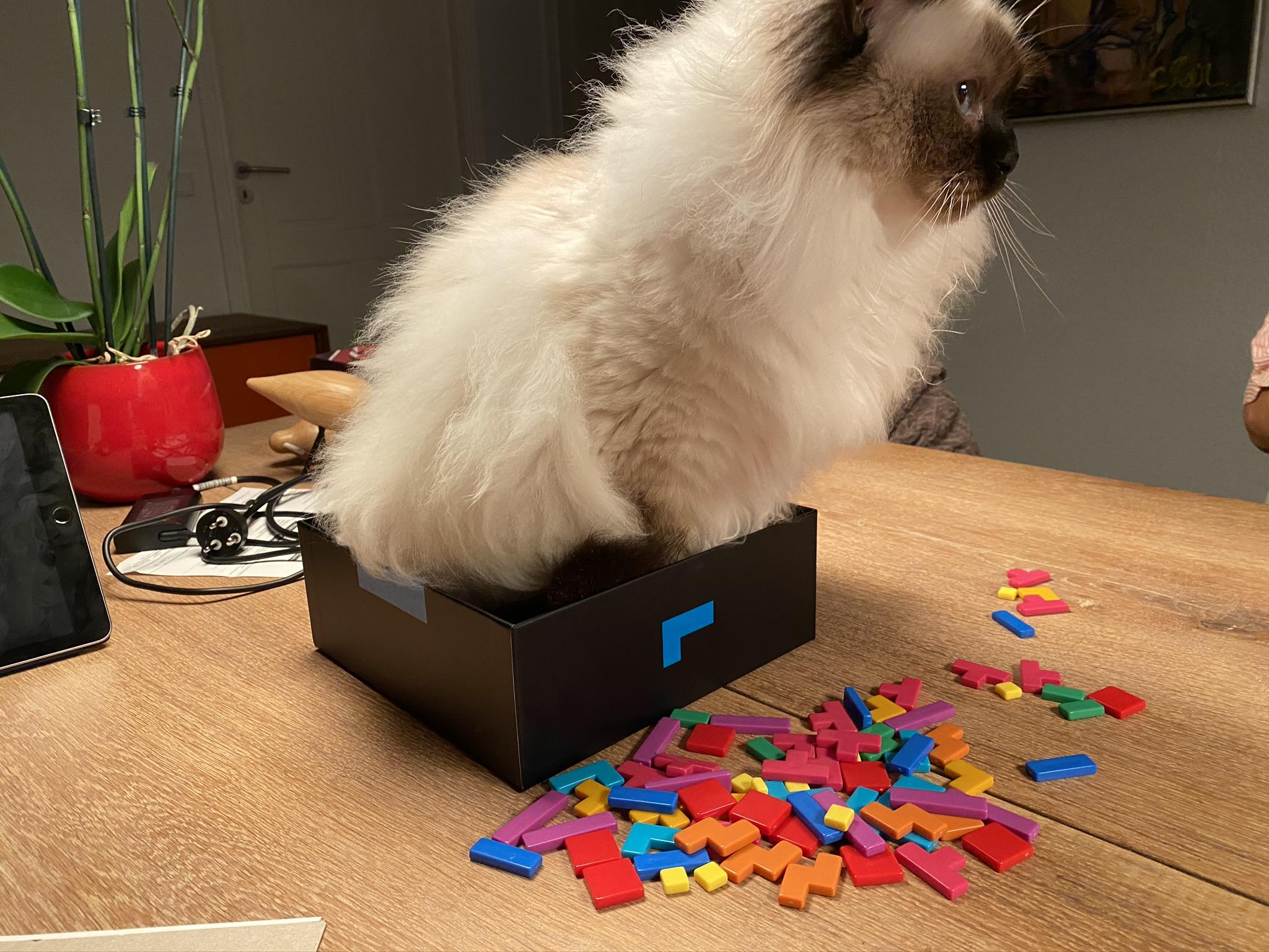 Helge is box testing